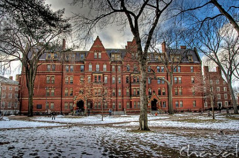 Harvard Yard winter