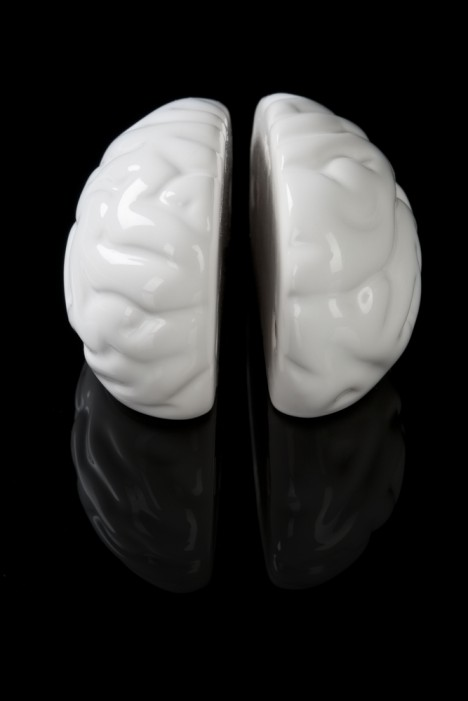 Left brain right brain mold
