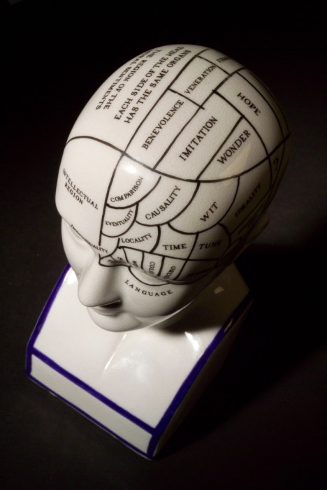 Phrenology on bust