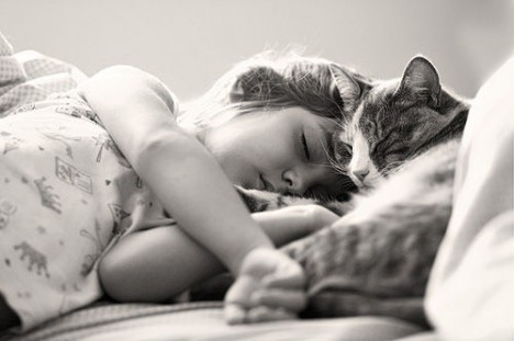 Sleeping girl and cat