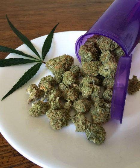 cannabis-1418325_1280 (1)