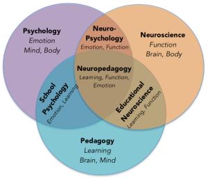 ESNP's Unique Neuropedagogy Synthesis