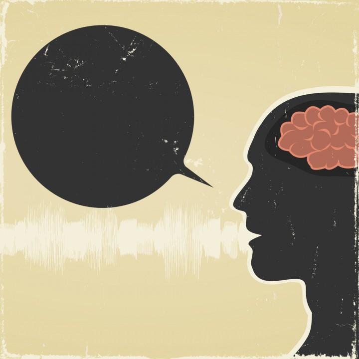 linguistic relativity hypothesis