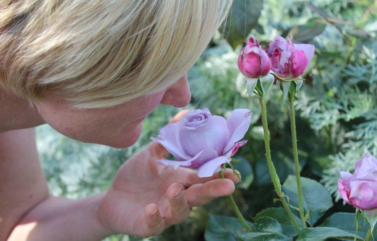 smell-test-alzheimers